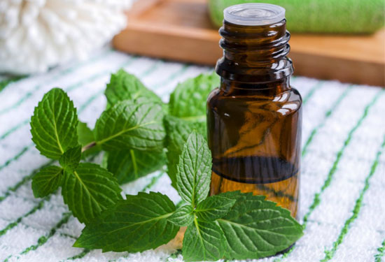 essential oils for nerve pain - Peppermint Oil